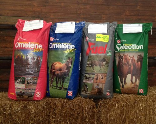 Alimenti per cavalli